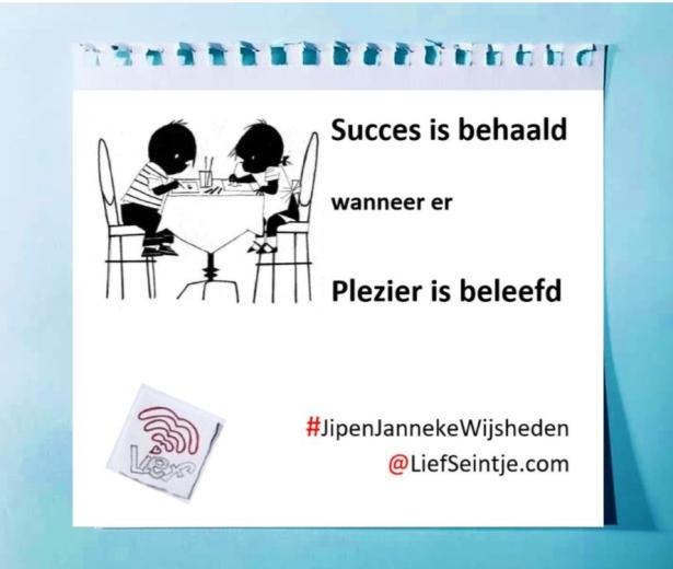 Succes vs Plezier