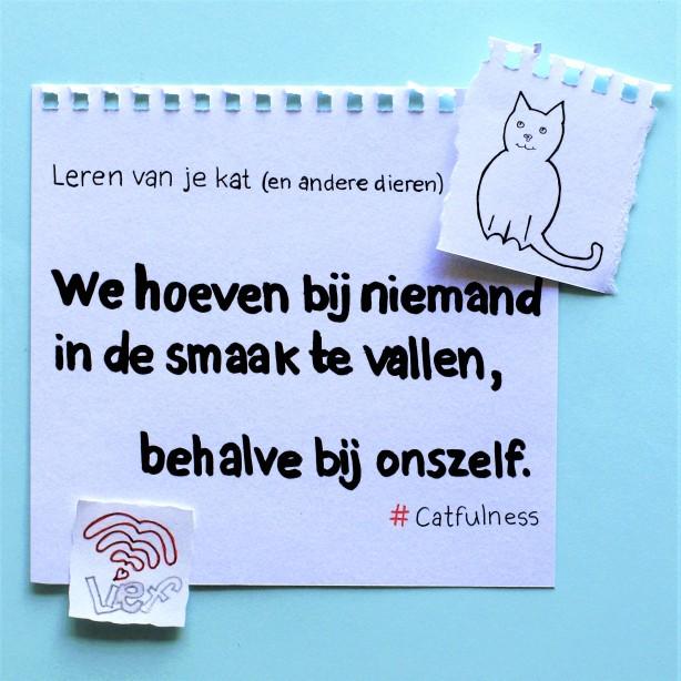 Kattenwijsheid 1