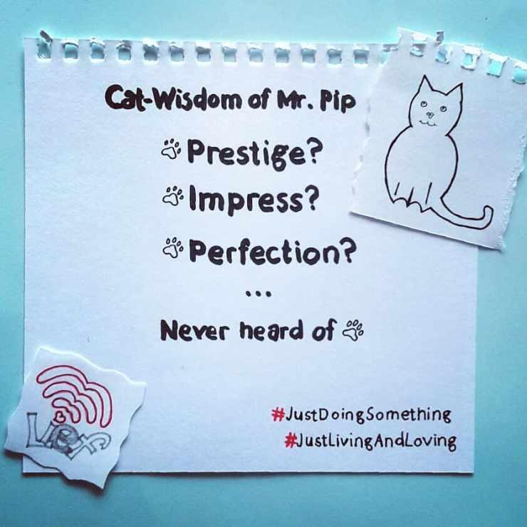 PIP wijsheid