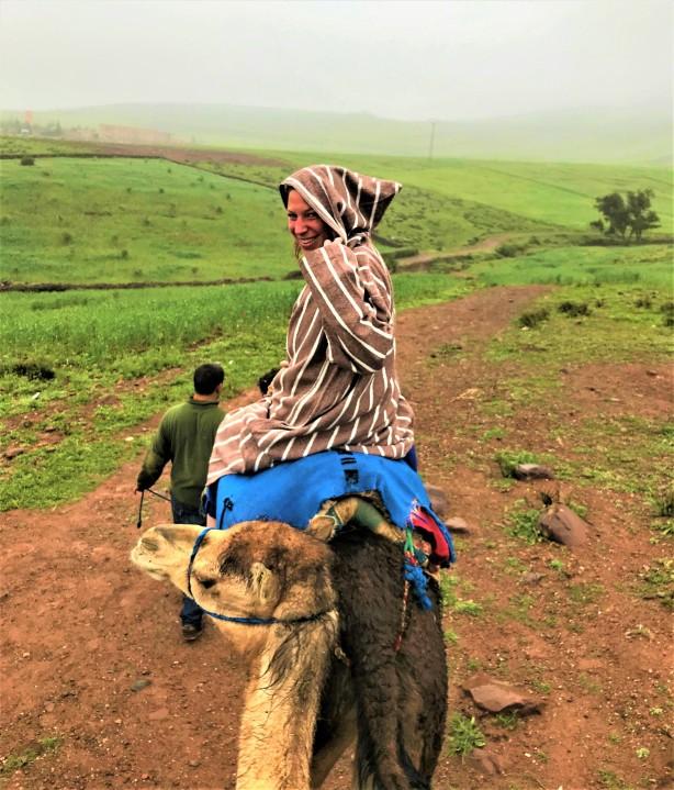 kameel (3)